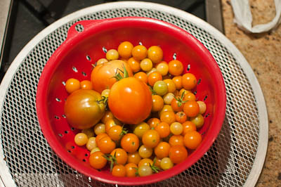 Central Texas Tomatoes