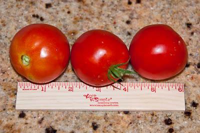 Bush Early Girl Tomatoes